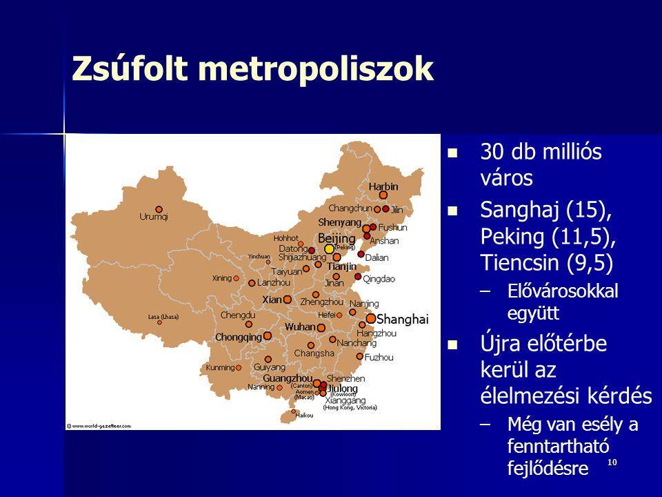 10 Zsúfolt metropoliszok 30 db milliós város Sanghaj (15), Peking (11,5), Tiencsin (9,5) – –Elővárosokkal együtt Újra előtérbe kerül az élelmezési kér