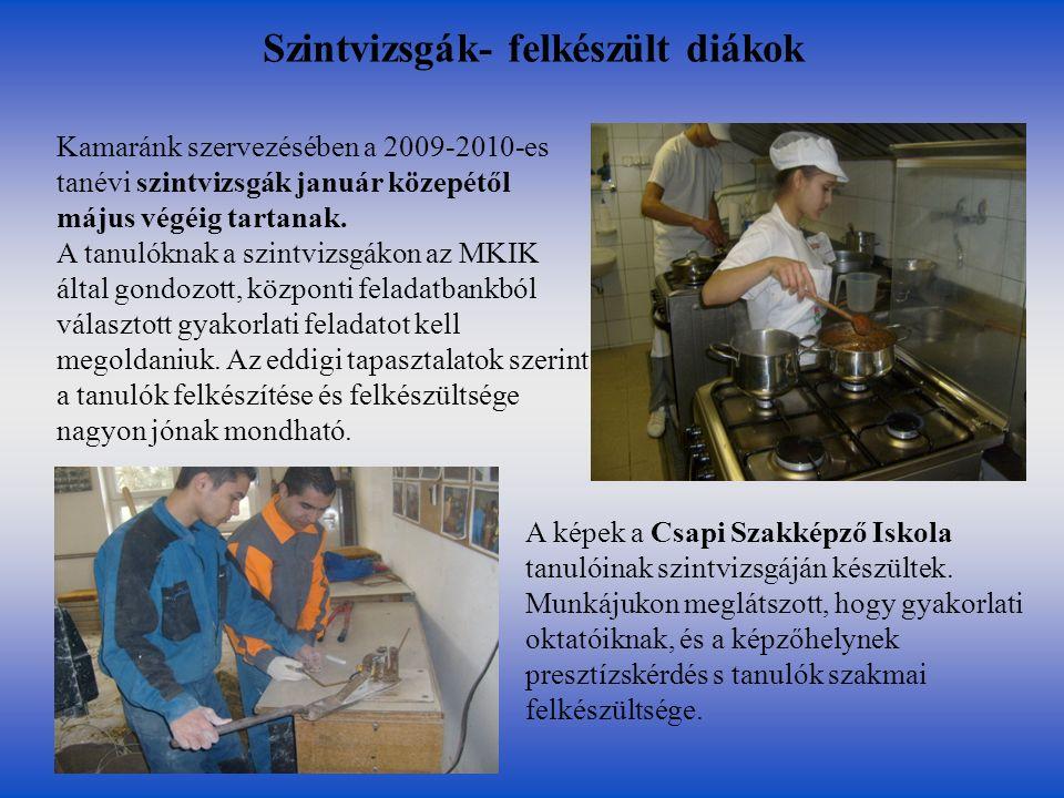 Szintvizsgák- felkészült diákok Kamaránk szervezésében a 2009-2010-es tanévi szintvizsgák január közepétől május végéig tartanak. A tanulóknak a szint