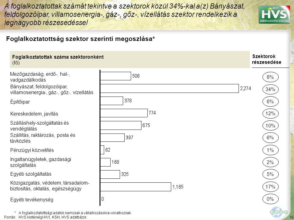 16 Foglalkoztatottság szektor szerinti megoszlása* A foglalkoztatottak számát tekintve a szektorok közül 34%-kal a(z) Bányászat, feldolgozóipar, villa
