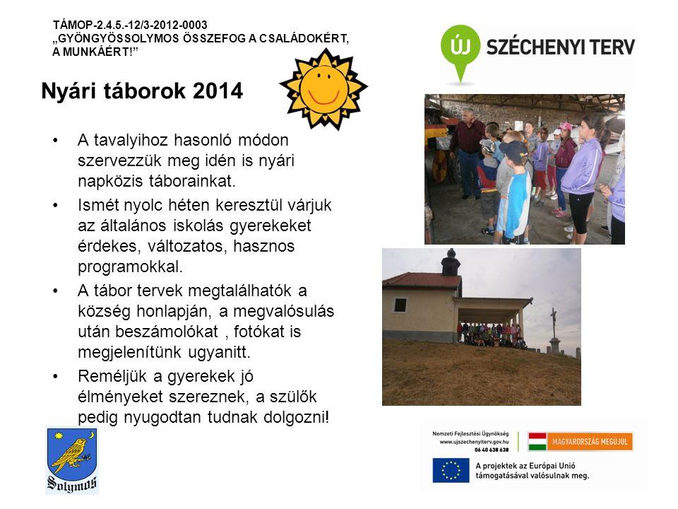 Nyári táborok 2014 A tavalyihoz hasonló módon szervezzük meg idén is nyári napközis táborainkat.