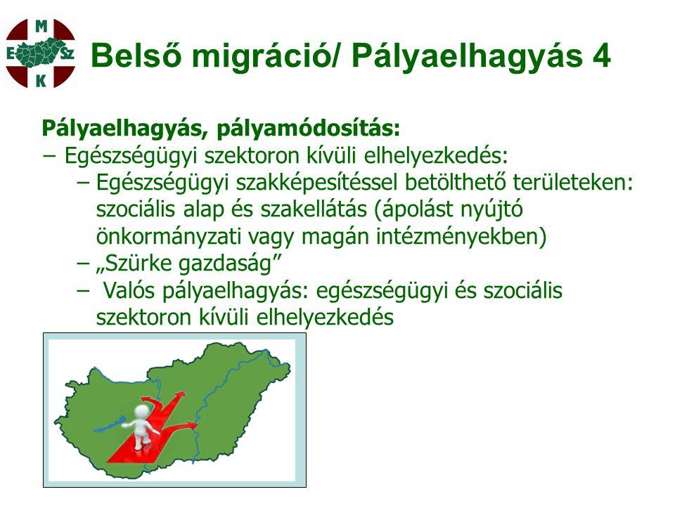 """Belső migráció/ Pályaelhagyás 4 Pályaelhagyás, pályamódosítás: − Egészségügyi szektoron kívüli elhelyezkedés: −Egészségügyi szakképesítéssel betölthető területeken: szociális alap és szakellátás (ápolást nyújtó önkormányzati vagy magán intézményekben) −""""Szürke gazdaság − Valós pályaelhagyás: egészségügyi és szociális szektoron kívüli elhelyezkedés"""