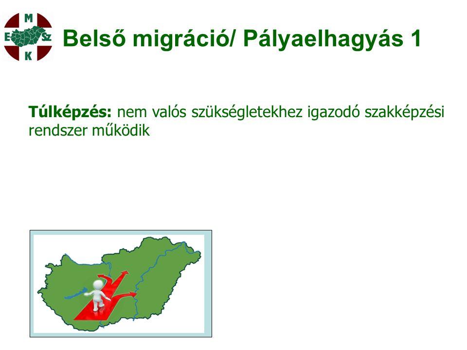 Belső migráció/ Pályaelhagyás 1 Túlképzés: nem valós szükségletekhez igazodó szakképzési rendszer működik
