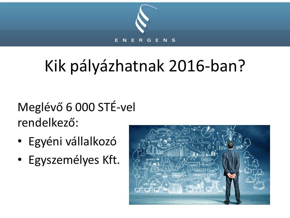 Kik pályázhatnak 2016-ban? Meglévő 6 000 STÉ-vel rendelkező: Egyéni vállalkozó Egyszemélyes Kft.