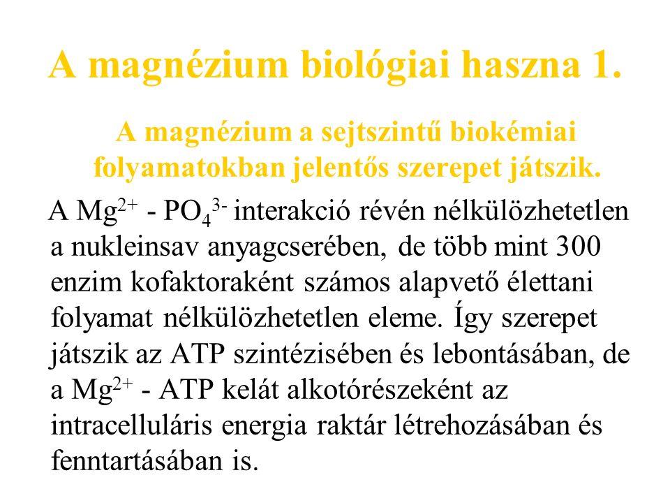 A magnézium biológiai haszna 2.Magnéziumra szükség van a sejtek integritásának fenntartásához is.
