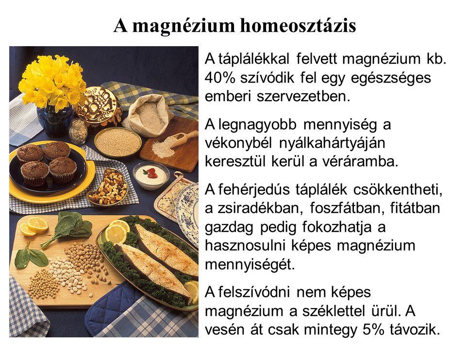 A táplálékkal felvett magnézium kb. 40% szívódik fel egy egészséges emberi szervezetben.