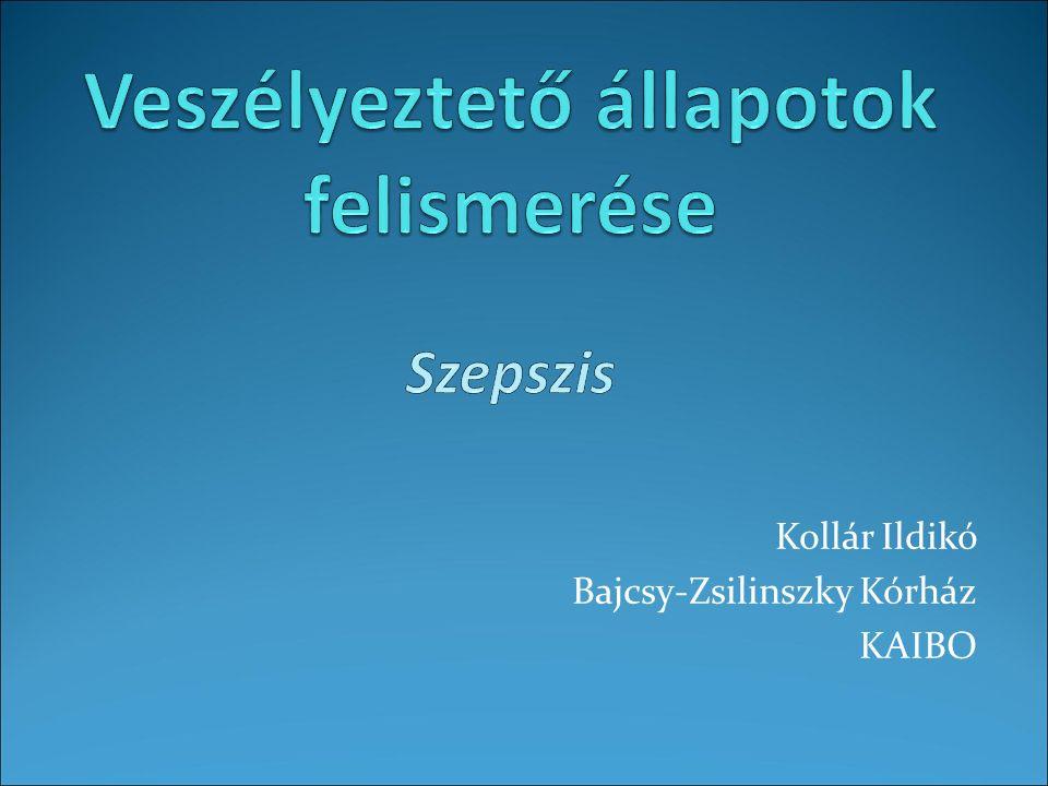 Kollár Ildikó Bajcsy-Zsilinszky Kórház KAIBO