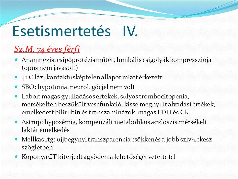 Esetismertetés IV. Sz.M.