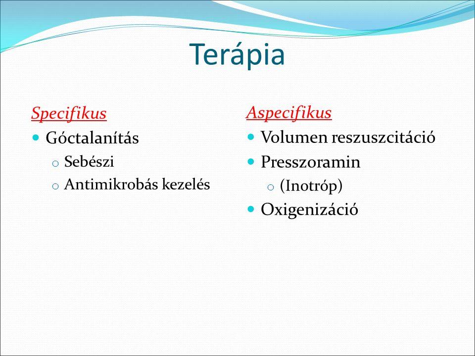 Terápia Specifikus Góctalanítás o Sebészi o Antimikrobás kezelés Aspecifikus Volumen reszuszcitáció Presszoramin o (Inotróp) Oxigenizáció