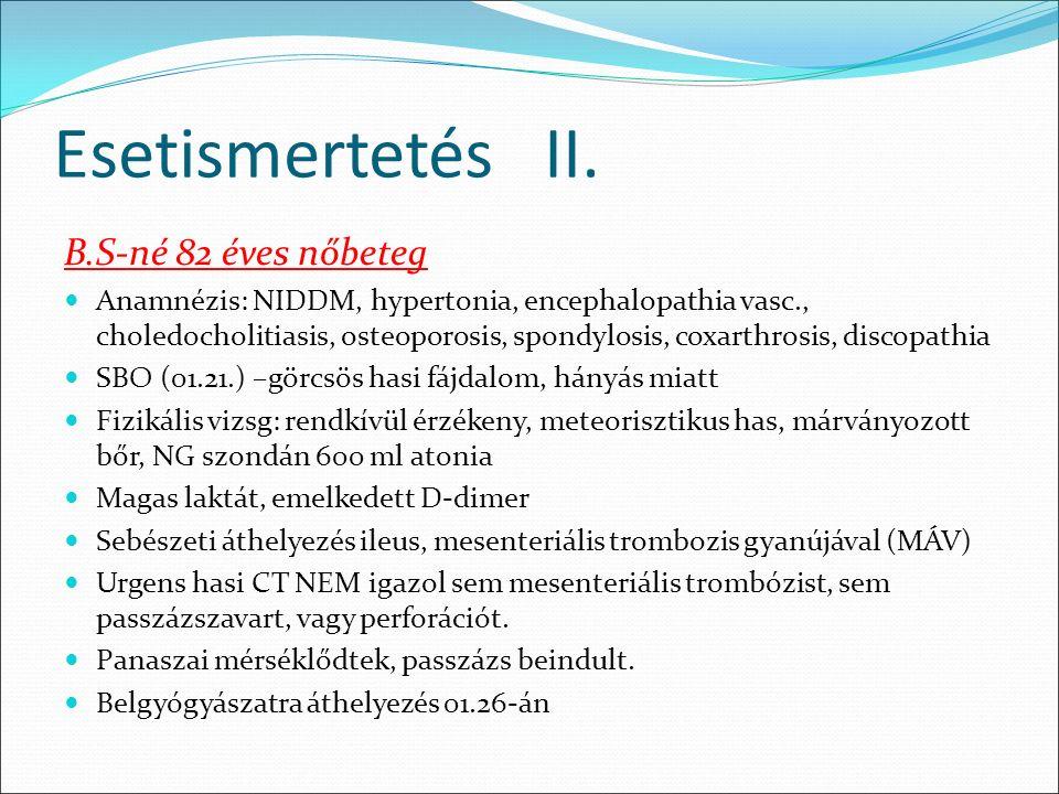 Esetismertetés II.