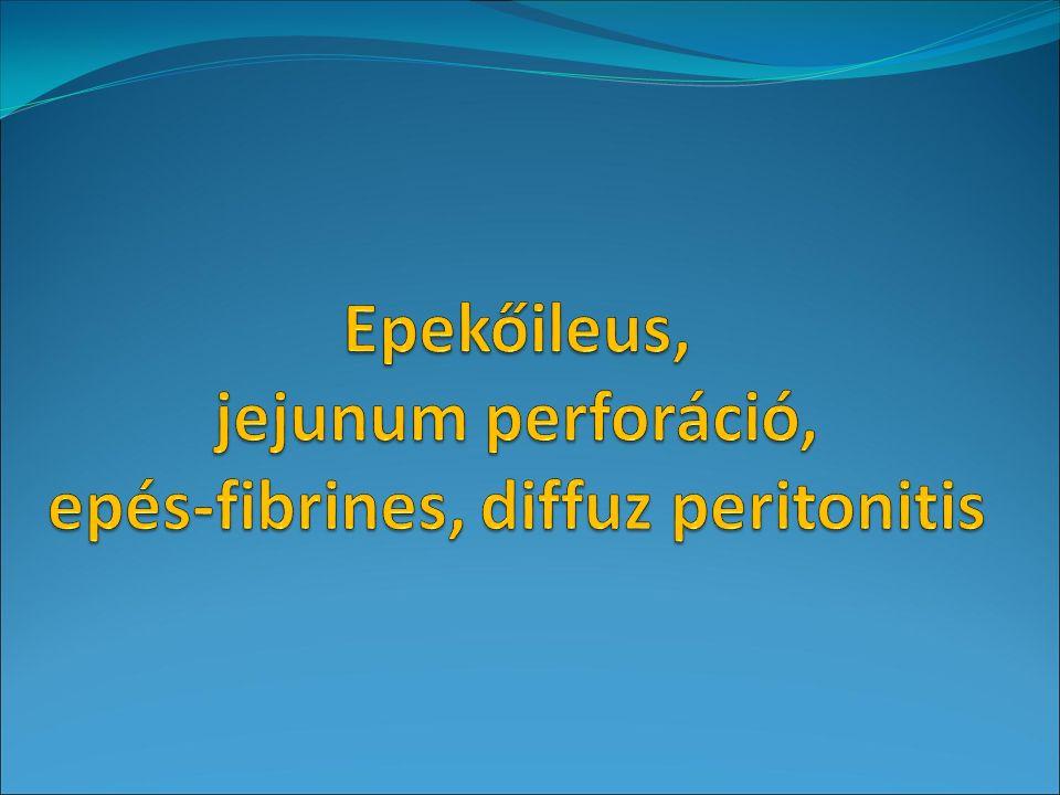 PiCCO: perctérfogat (CO) monitorozás Perctérfogat: percenként továbbított vér mennyisége.