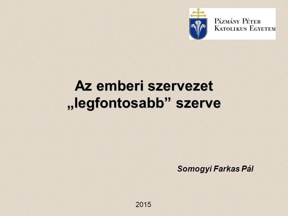 """Az emberi szervezet """"legfontosabb"""" szerve Somogyi Farkas Pál 2015"""