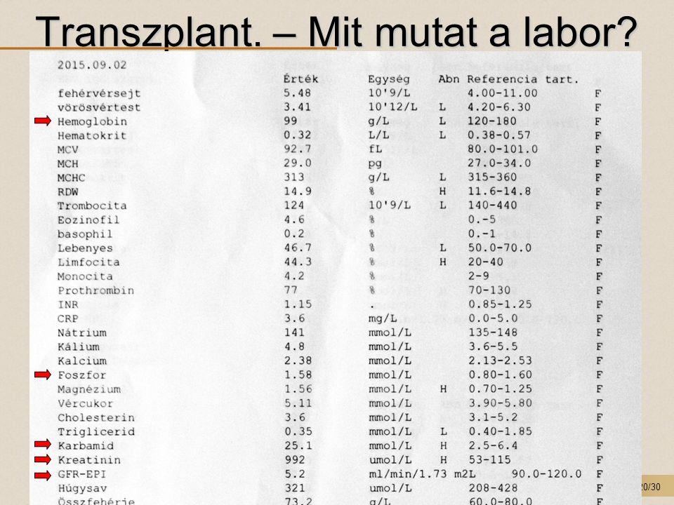 20/30 Transzplant. – Mit mutat a labor? T