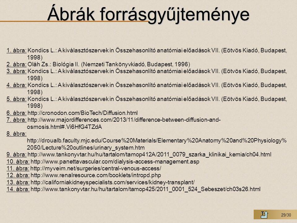 29/30 Ábrák forrásgyűjteménye T 1. ábra: Kondics L.: A kiválasztószervek in Összehasonlító anatómiai előadások VII. (Eötvös Kiadó, Budapest, 1998) 2.