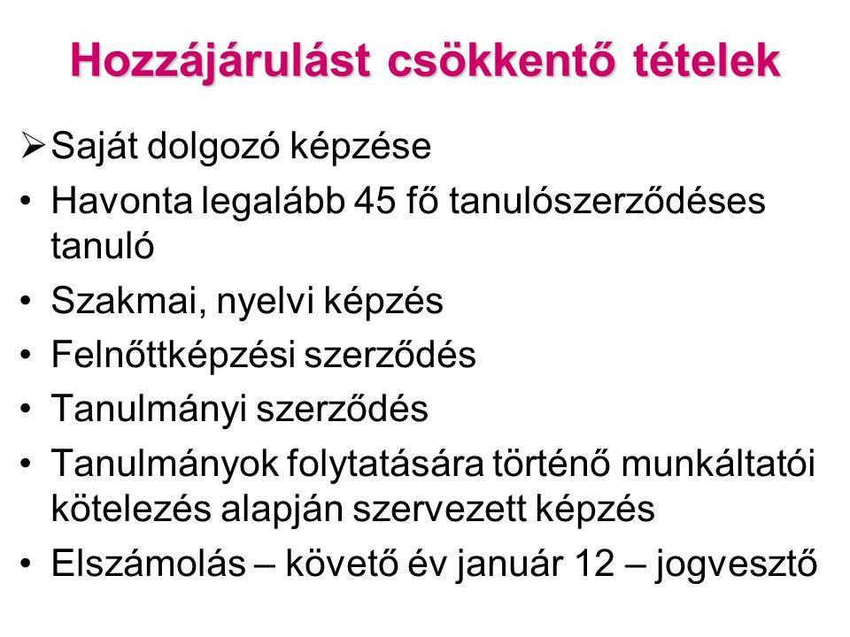 Hozzájárulást csökkentő tételek  Saját dolgozó képzése Havonta legalább 45 fő tanulószerződéses tanuló Szakmai, nyelvi képzés Felnőttképzési szerződés Tanulmányi szerződés Tanulmányok folytatására történő munkáltatói kötelezés alapján szervezett képzés Elszámolás – követő év január 12 – jogvesztő