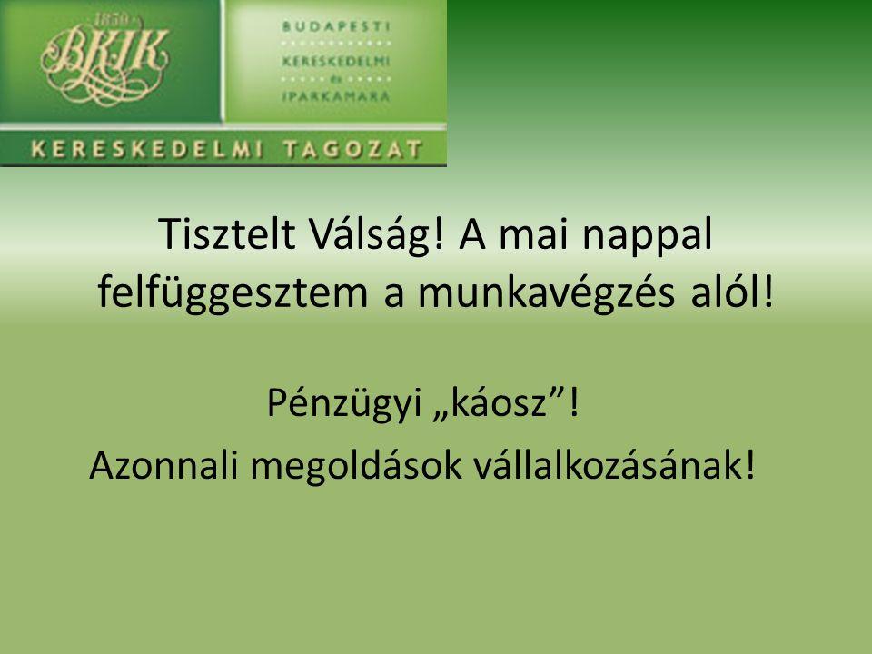 15.00 Köszöntő és bevezető Balázs Iván, IX.