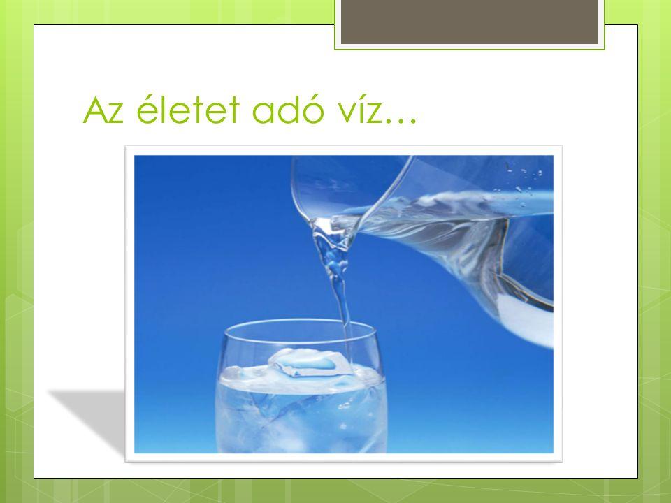 Az életet adó víz…