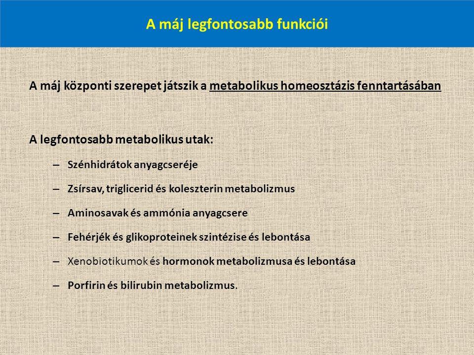A máj legfontosabb funkciói A máj központi szerepet játszik a metabolikus homeosztázis fenntartásában A legfontosabb metabolikus utak: – Szénhidrátok