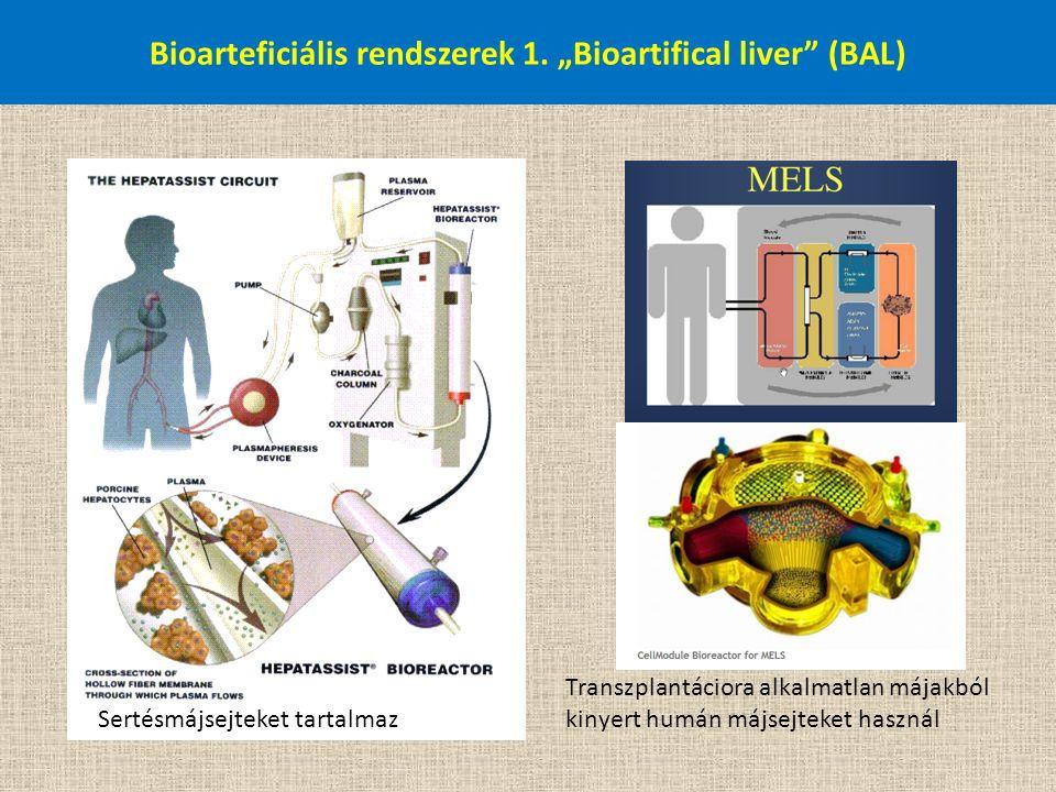 """Bioarteficiális rendszerek 1. """"Bioartifical liver"""" (BAL) Transzplantáciora alkalmatlan májakból kinyert humán májsejteket használ Sertésmájsejteket ta"""