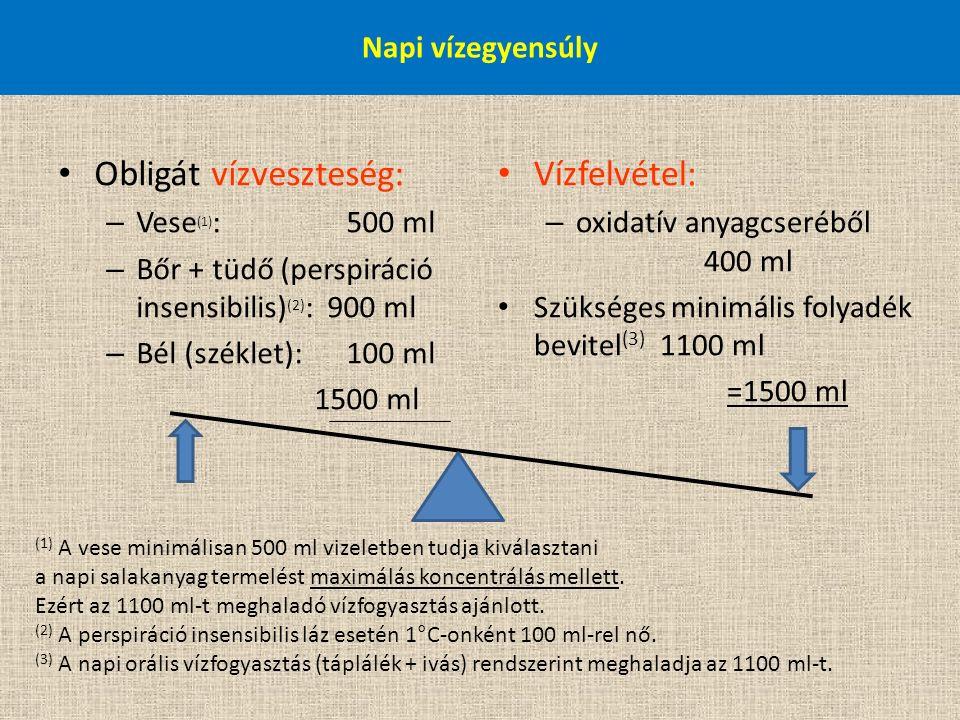 Napi vízegyensúly Obligát vízveszteség: – Vese (1) : 500 ml – Bőr + tüdő (perspiráció insensibilis) (2) : 900 ml – Bél (széklet):100 ml 1500 ml Vízfel