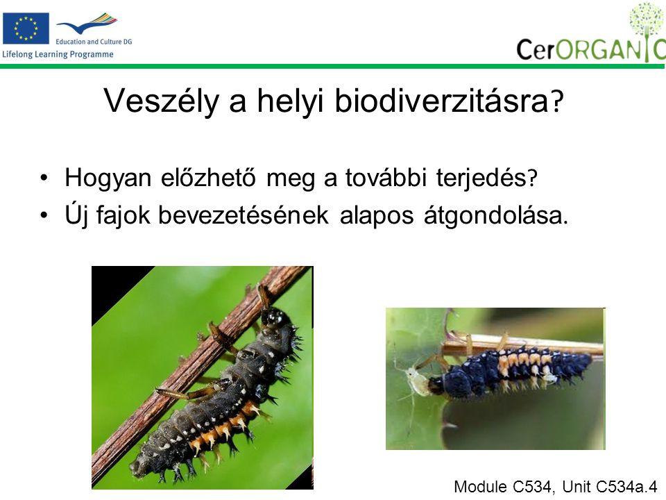 Veszély a helyi biodiverzitásra .Hogyan előzhető meg a további terjedés .