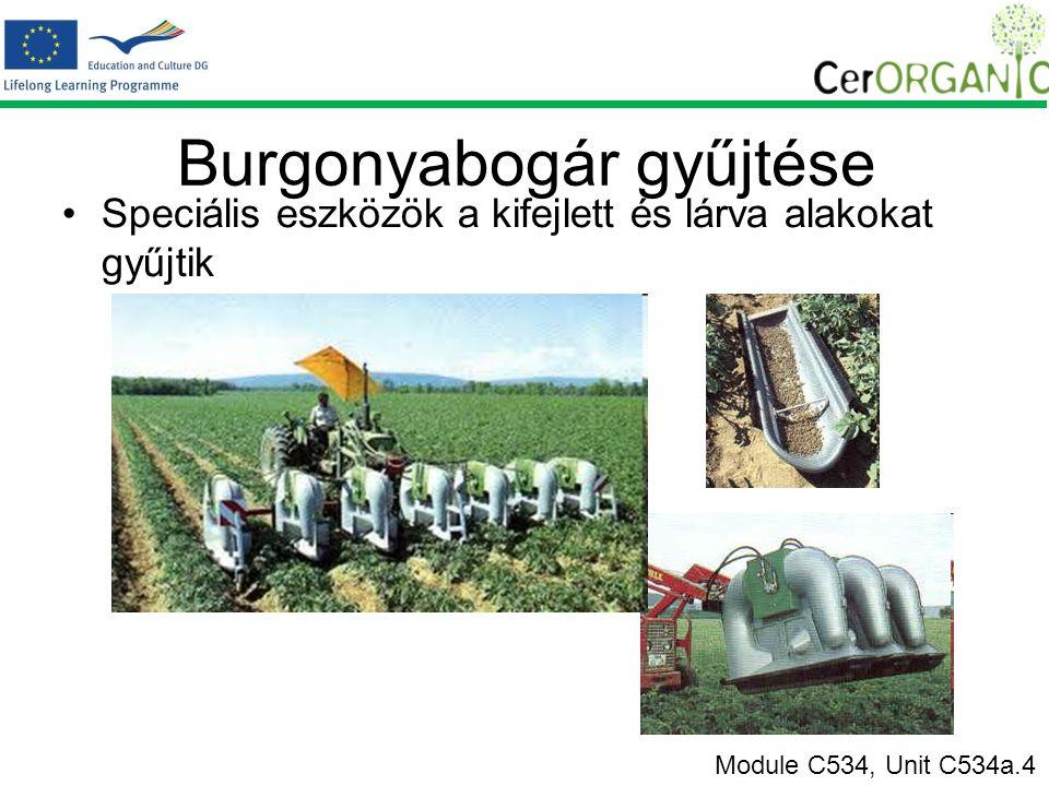 Burgonyabogár gyűjtése Speciális eszközök a kifejlett és lárva alakokat gyűjtik Module C534, Unit C534a.4