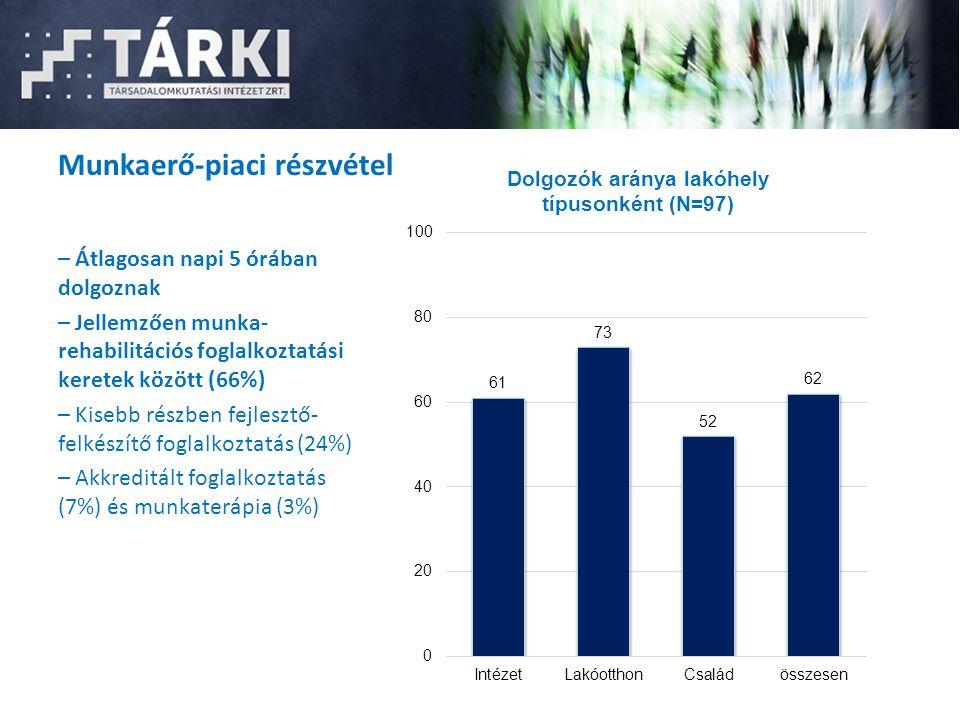 Munkaerő-piaci részvétel – Átlagosan napi 5 órában dolgoznak – Jellemzően munka- rehabilitációs foglalkoztatási keretek között (66%) – Kisebb részben fejlesztő- felkészítő foglalkoztatás (24%) – Akkreditált foglalkoztatás (7%) és munkaterápia (3%)