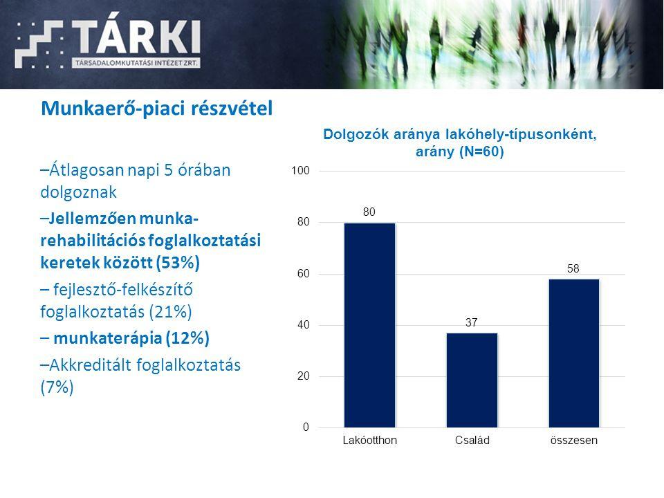 Munkaerő-piaci részvétel –Átlagosan napi 5 órában dolgoznak –Jellemzően munka- rehabilitációs foglalkoztatási keretek között (53%) – fejlesztő-felkészítő foglalkoztatás (21%) – munkaterápia (12%) –Akkreditált foglalkoztatás (7%)