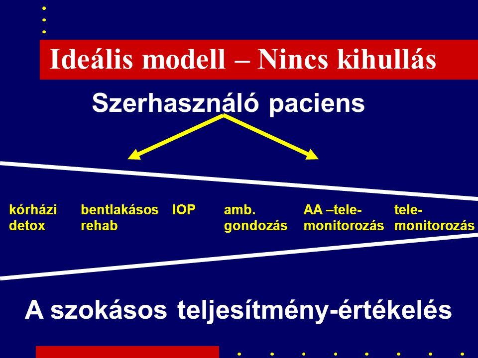 Ideális modell – Nincs kihullás Szerhasználó paciens A szokásos teljesítmény-értékelés kórházi detox bentlakásos rehab IOPamb.