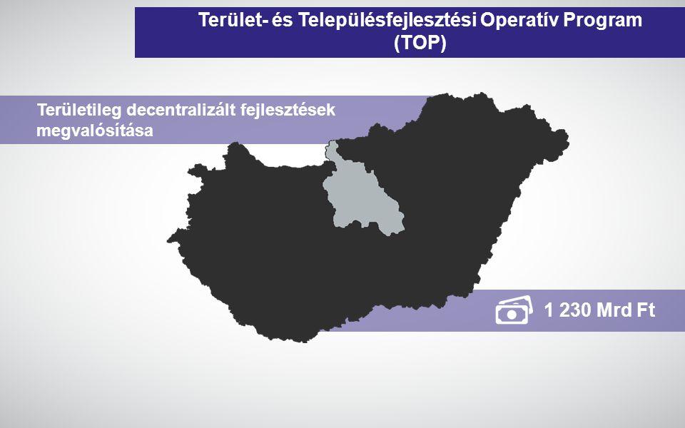 www.gwconsulting.hu Terület- és Településfejlesztési Operatív Program (TOP) 1 230 Mrd Ft Területileg decentralizált fejlesztések megvalósítása