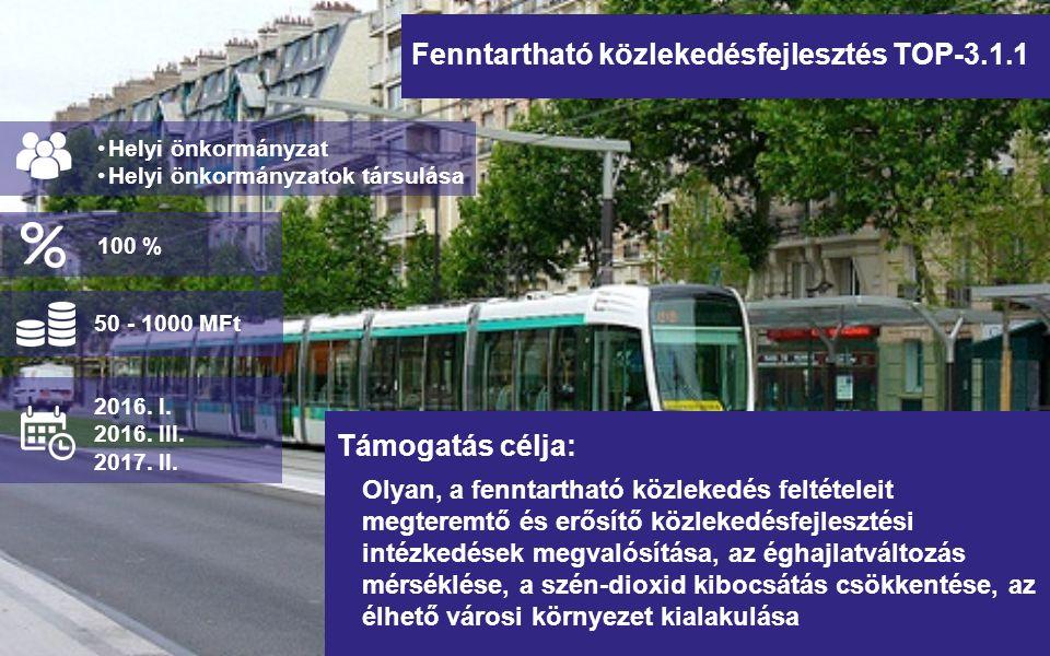 Fenntartható közlekedésfejlesztés TOP-3.1.1 Olyan, a fenntartható közlekedés feltételeit megteremtő és erősítő közlekedésfejlesztési intézkedések megvalósítása, az éghajlatváltozás mérséklése, a szén-dioxid kibocsátás csökkentése, az élhető városi környezet kialakulása Helyi önkormányzat Helyi önkormányzatok társulása Támogatás célja: 50 - 1000 MFt 2016.