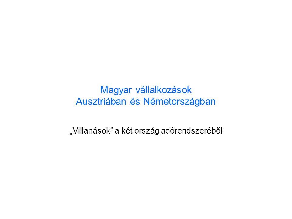 """Magyar vállalkozások Ausztriában és Németországban """"Villanások a két ország adórendszeréből"""