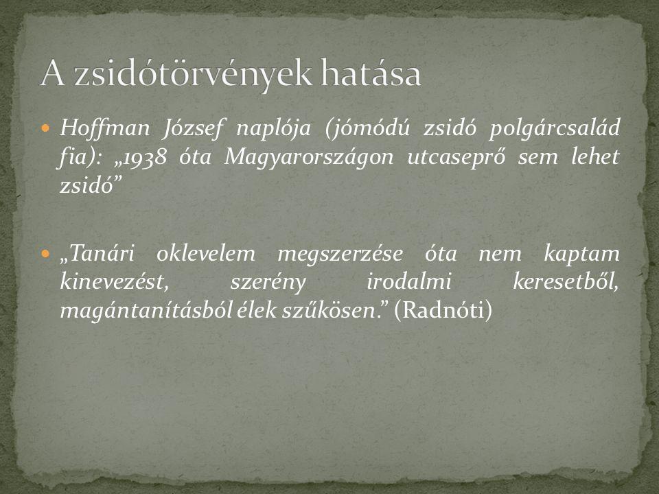 """Hoffman József naplója (jómódú zsidó polgárcsalád fia): """"1938 óta Magyarországon utcaseprő sem lehet zsidó """"Tanári oklevelem megszerzése óta nem kaptam kinevezést, szerény irodalmi keresetből, magántanításból élek szűkösen. (Radnóti)"""