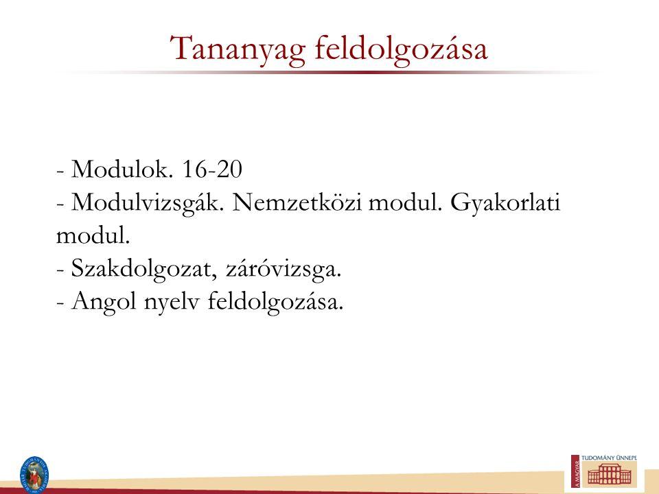 Tananyag feldolgozása - Modulok. 16-20 - Modulvizsgák. Nemzetközi modul. Gyakorlati modul. - Szakdolgozat, záróvizsga. - Angol nyelv feldolgozása.