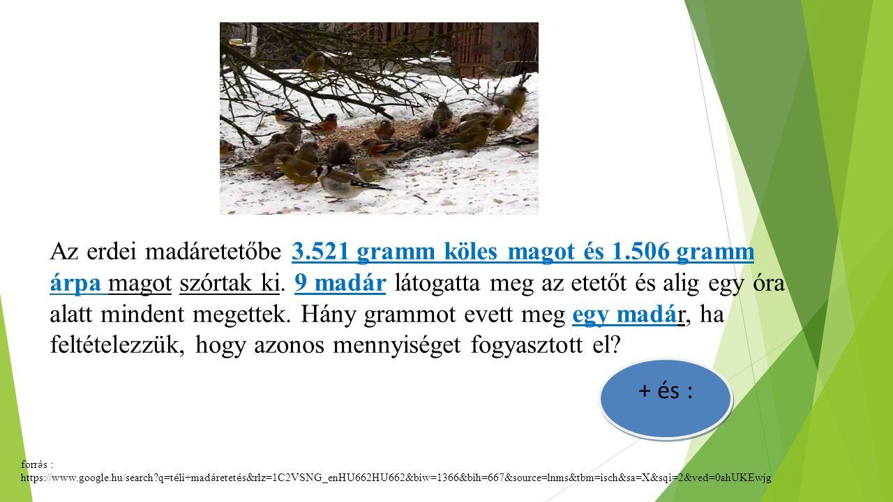 Az erdei madáretetőbe 3.521 gramm köles magot és 1.506 gramm árpa magot szórtak ki. 9 madár látogatta meg az etetőt és alig egy óra alatt mindent mege