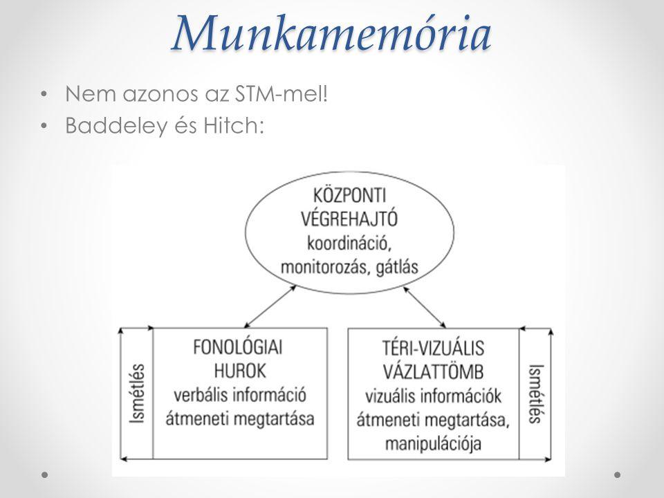 Emlékezeti tárak szenzoros tár RTM rövid távú memória HTM hosszú távú m.