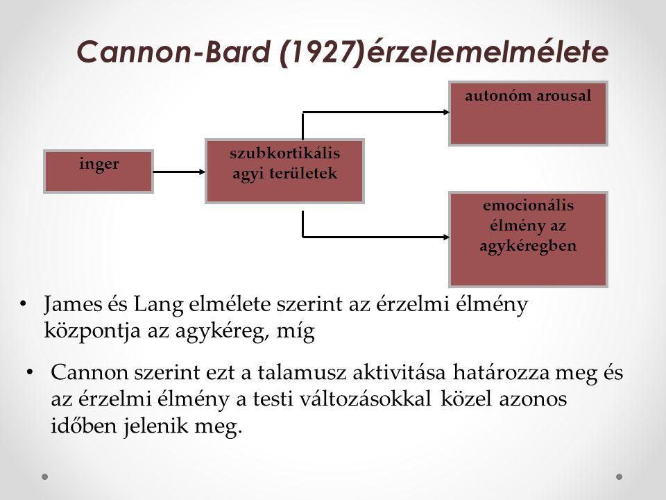 Cannon kritikája A zsigeri változások hosszú időlefutása nem magyarázza az érzelmek azonnali fellépését A művi úton előidézett zsigeri változások nem okoznak érzelmeket A zsigerek érzéketlen képletek (kevés érzőideg) A különböző érzelmek esetén is azonos zsigeri változások figyelhetők meg (pl.