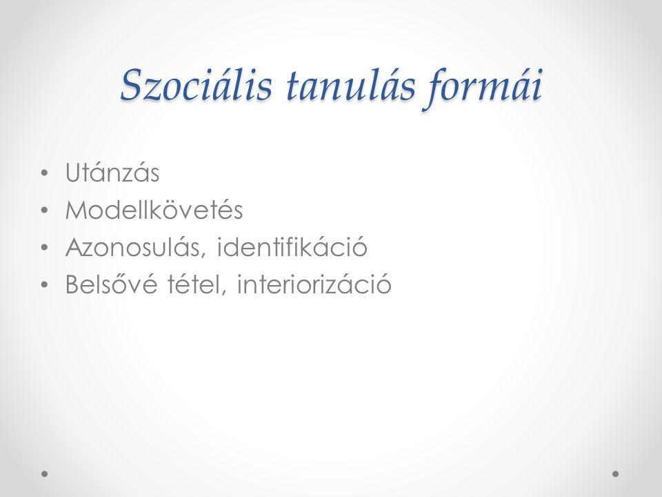 A szocializáció szinterei Család (elsődleges szintér) Oktatási intézmények (óvoda, iskola) – másodlagos szintér Munkahely – harmadlagos szintér
