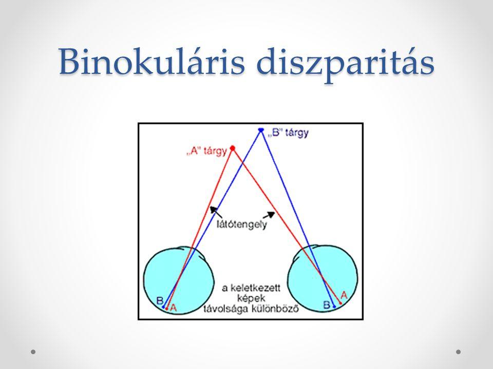 Távolság- és mélységészlelés Monokuláris jelzőmozzanatok Relatív nagyság Relatív magasság Takarás Lineáris perspektíva Levegő perspektíva Mozgási parallaxis Binokuláris jelzőmozzanatok akkomodáció Binokuláris diszparitás Binokuláris parallaxis