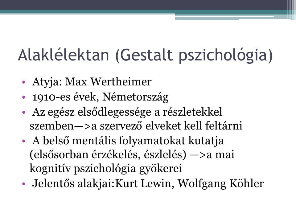 Behaviorizmus John B. Watson (1878-1958) 1913-Hogyan látja a behaviorista a pszichológiát? (a behaviorizmus nyitánya) Amerikában jön létre Objektívvé