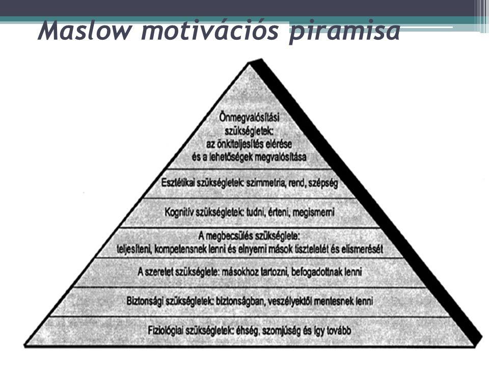Extrinsic és intrinsic motiváció  Extrinsic (eszköz jellegű) motiváció: a viselkedés motivációjában valamilyen cél elérése vagy külső tényező játszik