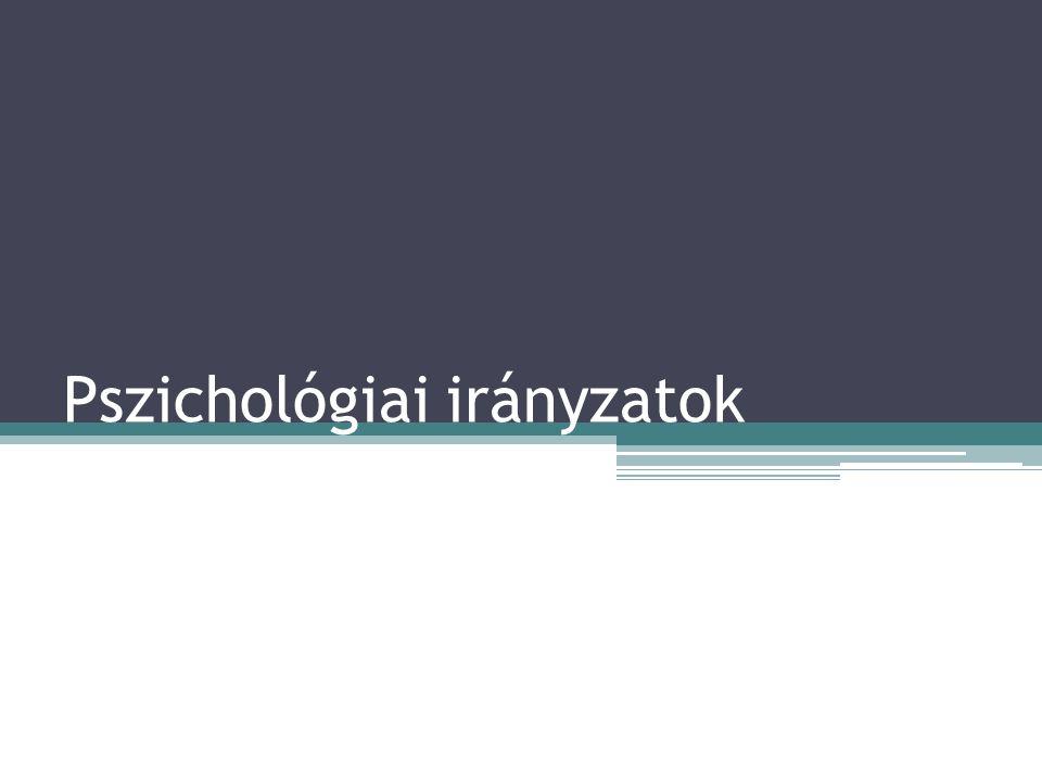 Vizsgálati módszerek Cél: a már rendszerezett kutatási eredmények alkalmazása Kikérdezés ▫Interjúk ▫Kérdőívek (nyílt végű, zárt végű) Skálák (2,5,7,9