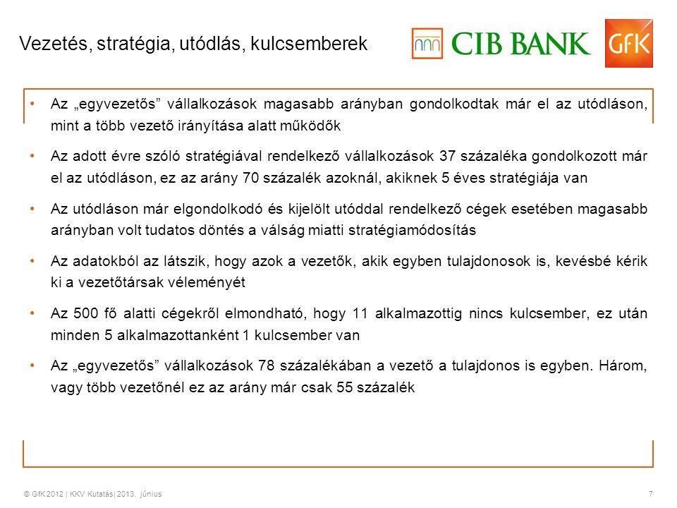 © GfK 2012 | KKV Kutatás| 2013. június 8 A vállalkozások belső működése