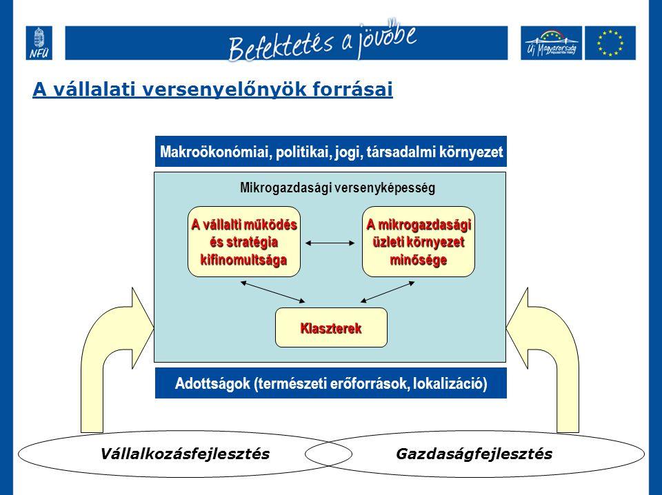 A vállalati versenyelőnyök forrásai Makroökonómiai, politikai, jogi, társadalmi környezet Adottságok (természeti erőforrások, lokalizáció) A vállalti működés és stratégia kifinomultsága A mikrogazdasági üzleti környezet minősége Klaszterek Mikrogazdasági versenyképesség VállalkozásfejlesztésGazdaságfejlesztés
