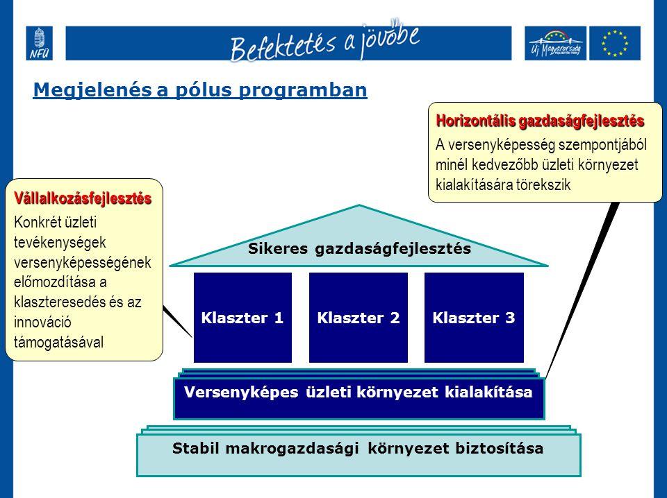 Versenyképes üzleti környezet kialakítása Klaszter 2Klaszter 3Klaszter 1 Stabil makrogazdasági környezet biztosítása Sikeres gazdaságfejlesztés Vállalkozásfejlesztés Konkrét üzleti tevékenységek versenyképességének előmozdítása a klaszteresedés és az innováció támogatásával Horizontális gazdaságfejlesztés A versenyképesség szempontjából minél kedvezőbb üzleti környezet kialakítására törekszik Megjelenés a pólus programban