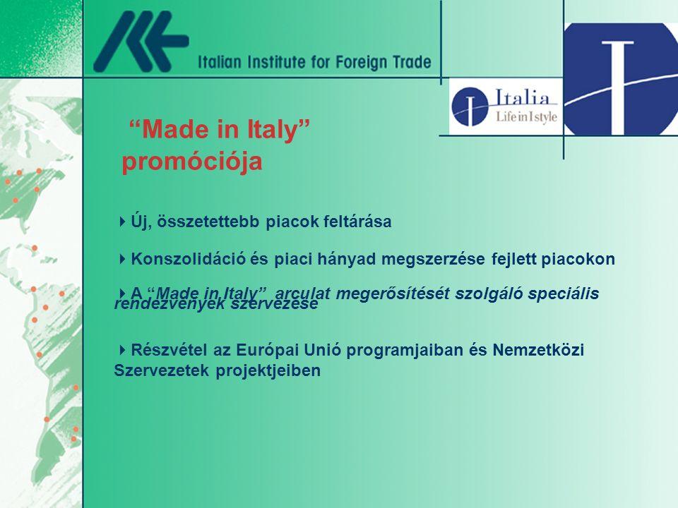 Made in Italy promóciója  Új, összetettebb piacok feltárása  Konszolidáció és piaci hányad megszerzése fejlett piacokon  A Made in Italy arculat megerősítését szolgáló speciális rendezvények szervezése  Részvétel az Európai Unió programjaiban és Nemzetközi Szervezetek projektjeiben
