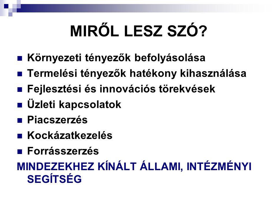 MIRŐL LESZ SZÓ.