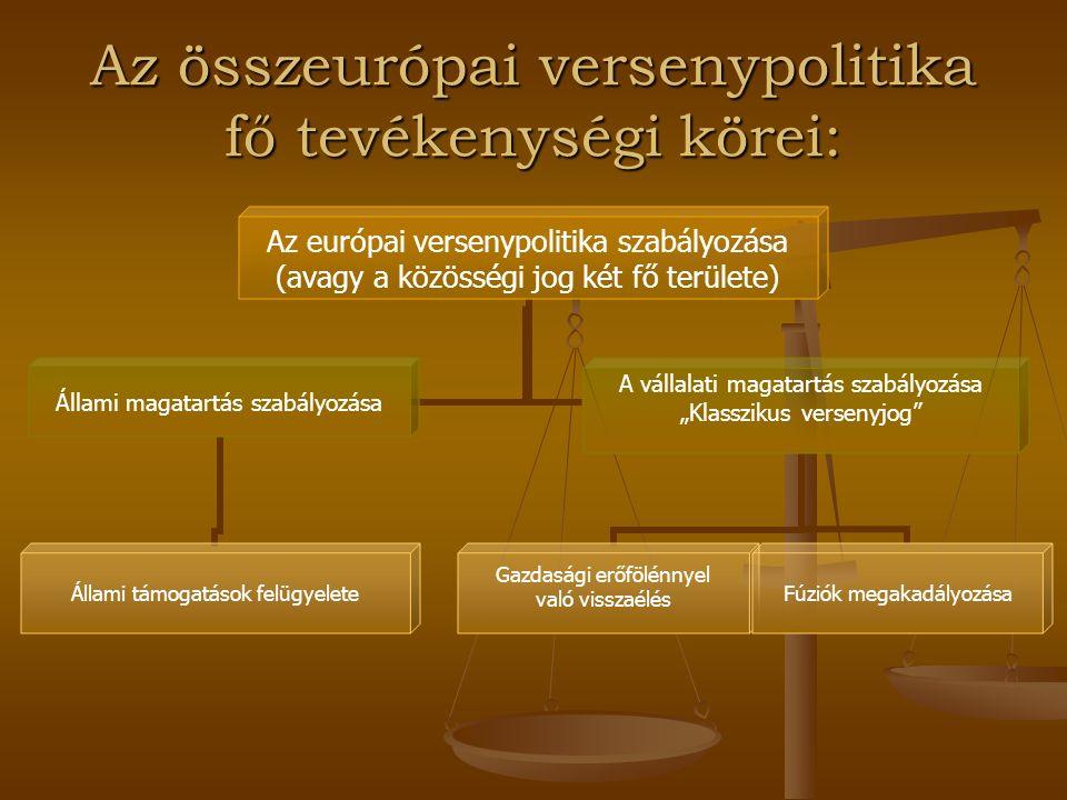 Az összeurópai versenypolitika fő tevékenységi körei: Az európai versenypolitika szabályozása (avagy a közösségi jog két fő területe) Állami magatartá