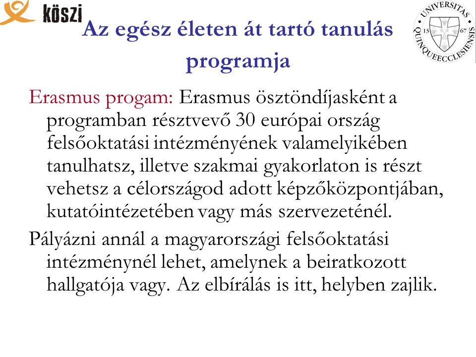 Az egész életen át tartó tanulás programja Erasmus progam: Erasmus ösztöndíjasként a programban résztvevő 30 európai ország felsőoktatási intézményéne