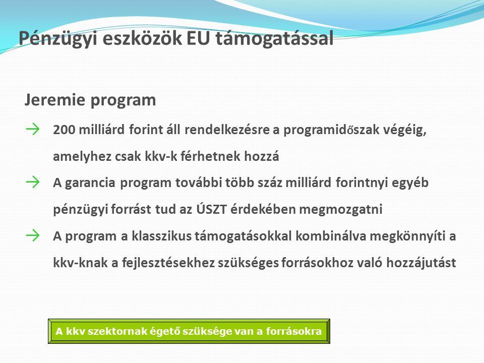 Pénzügyi eszközök EU támogatással Jeremie program → 200 milliárd forint áll rendelkezésre a programid ő szak végéig, amelyhez csak kkv-k férhetnek hozzá → A garancia program további több száz milliárd forintnyi egyéb pénzügyi forrást tud az ÚSZT érdekében megmozgatni → A program a klasszikus támogatásokkal kombinálva megkönnyíti a kkv-knak a fejlesztésekhez szükséges forrásokhoz való hozzájutást A kkv szektornak égető szüksége van a forrásokra