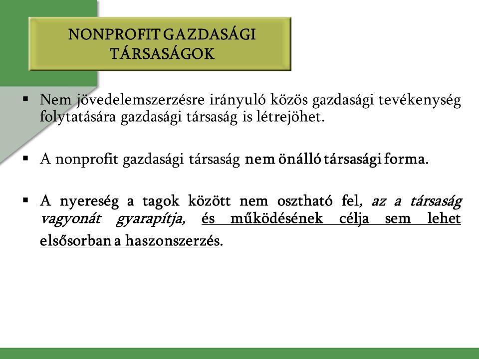 NONPROFIT GAZDASÁGI TÁRSASÁGOK  Nem jövedelemszerzésre irányuló közös gazdasági tevékenység folytatására gazdasági társaság is létrejöhet.